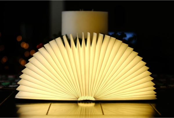 1604323228_Book-Lamp-Reading-Lamp